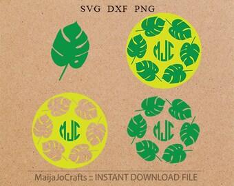 Jungle leaves monogram SVG Cricut monogram DXF, leave Clipart PNG instant download Silhouette monogram, Cricut designs, svg monogram