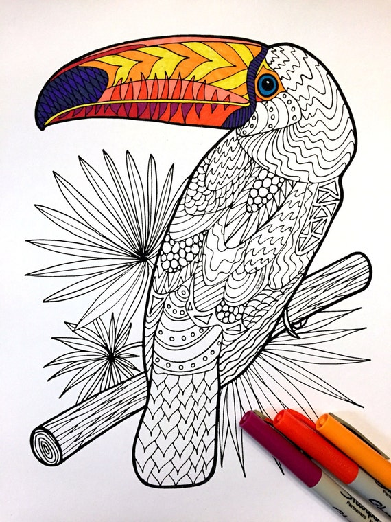 awesome Rainforest Toucan Bird Coloring Page | Bird coloring pages ... | 760x570