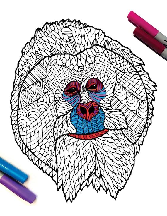 Orangutans coloring page | Coloring pages | 738x570