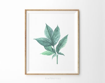 Botanical print - Green leaf print - Botanical print set - Printable botanical art - Scandinavian modern print - Nature wall art