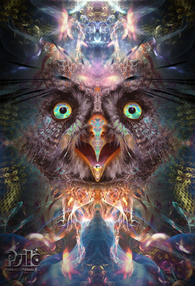 Psychedelic Owl, Fractal Art Painting, Wall Art, DMT, Trippy Home Decor,  Eye of Horus, Graphic Art, Wall Painting, Framed Digital Print