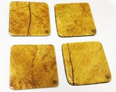 Flue-Cured Tobacco Leaf Coasters (Square)