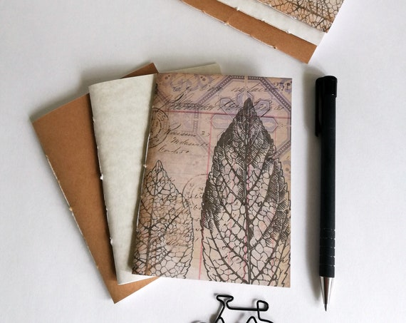 3 x Passport Travelers Notebook Inserts - Fauxdori Midori Insert - Book Bundle - Kraft Cream and Leaves - TN Accessory - Pack of 3 - RM202