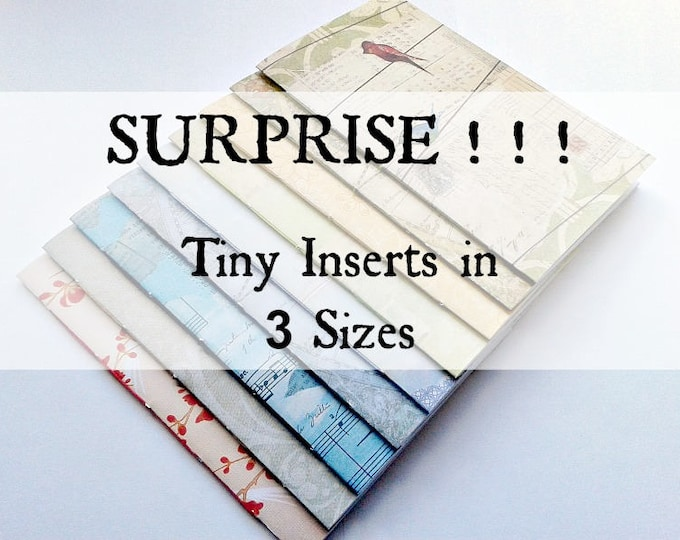 4 x TINY Traveler's Notebook Inserts - RANDOM SURPRISE Cover - Passport 4.9 x 3.5 - Micro 4.1 x 2.9 - Nano 3.75 x 2.5 - Fauxdori - RM040B