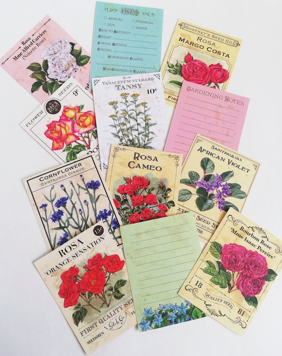 Journal Cards - Florals and Affirmations 3 x 4 inch and 6 x 4 cards printed - Travelers Notebook Journal Ephemera Collage Craft Media - E001