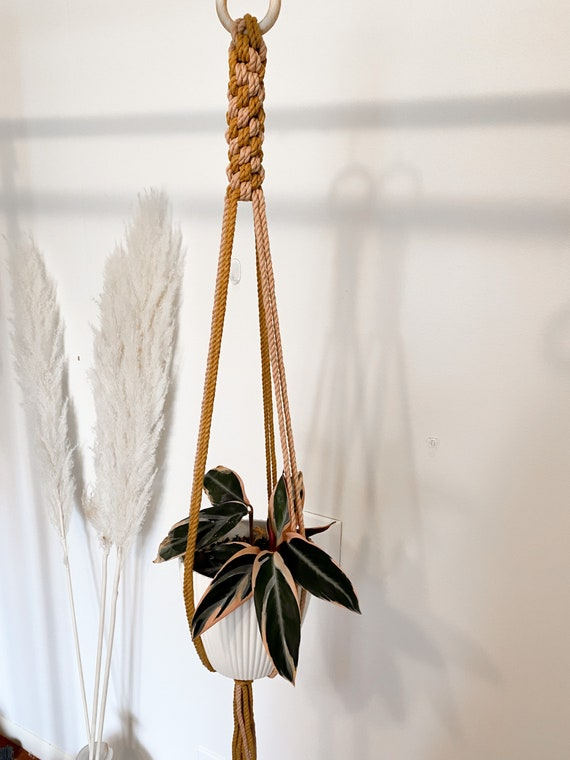 Dusty Blush and Mustard Color-Block Plant Hanger