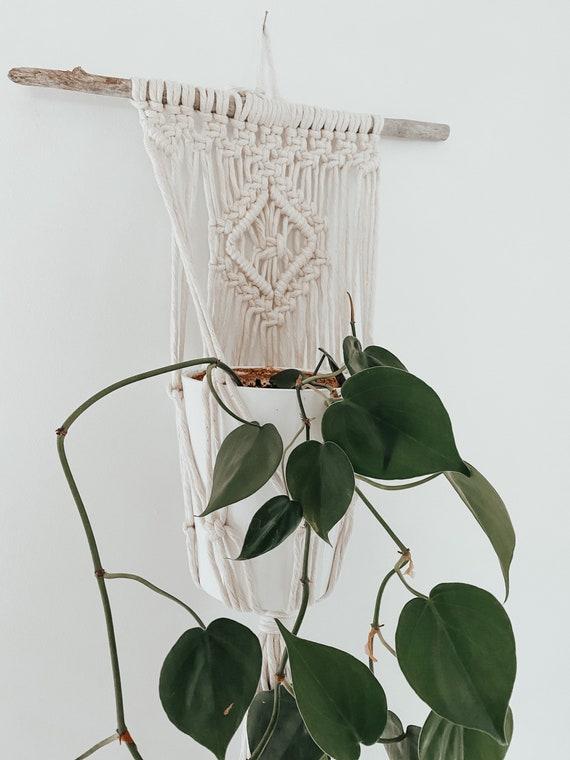 Macramé Plant Hanger | Driftwood Wall Hanging