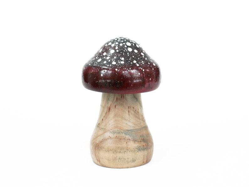 Unique Sorb Wood Mushroom image 0