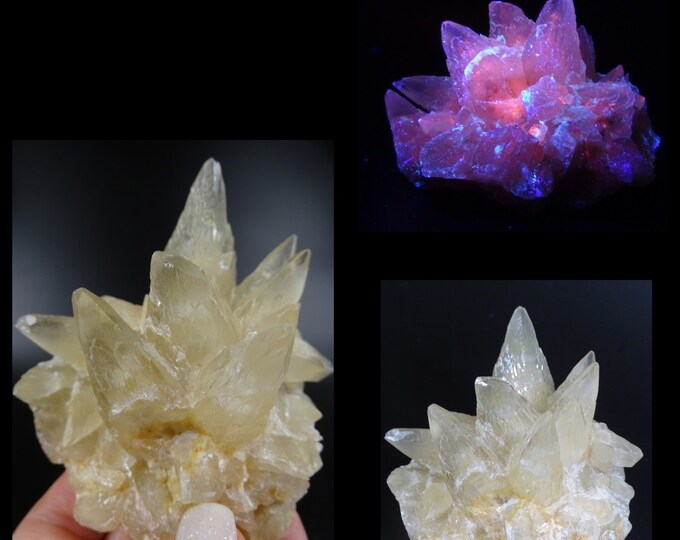 White and Pale Yellow Dog Tooth Calcite Cluster