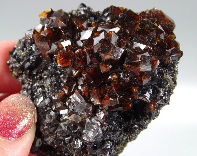 Brown Garnet Clusters on Black Crystalline Matrix - Pakistan