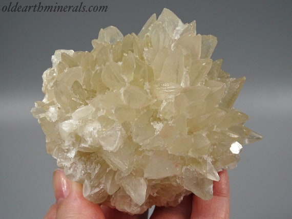 Dog Tooth Calcite Cluster - UV Reactive - Fluorescent