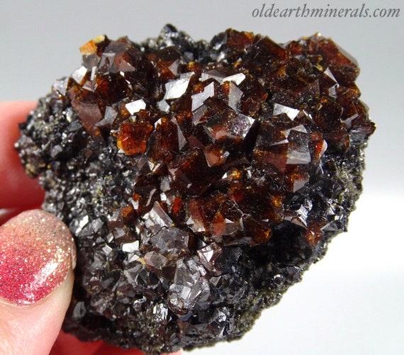 Brown Garnet Clusters on Black Crystalline Matrix - Pakistan
