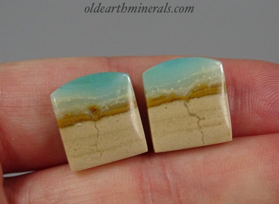Indonesian Blue Opal Petrified Wood Cabochon Pair