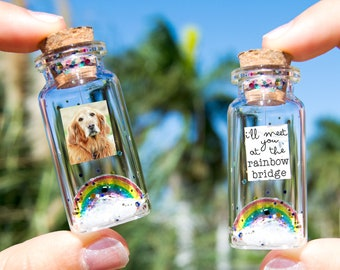 Dog Memorial, Pet Loss Gift, Pet Picture, Cat Memorial, Passing Pet, Rainbow Dog I'll Meet You at The Rainbow Bridge Dog Message in Bottle
