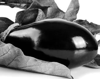 Aubergine Print, Abstract Aubergine, Summer Art, Black And White Print, Kitchen Art, Aubergine Decor, 8 x 10 inches, Unframed