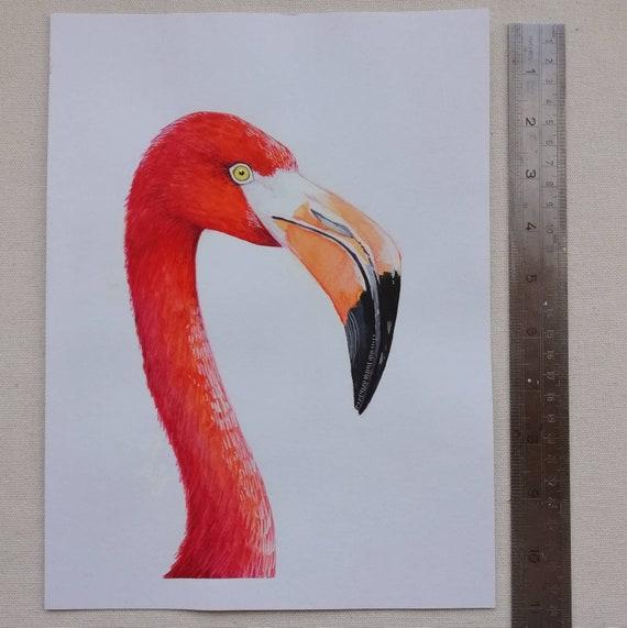 Flamingo regalo acquerello ORIGINALE la vendita carta arte, Stampa animali Fauna Selvatica NUOVO