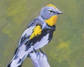 bird painting, bird art, oil painting, small art, wildlife painting, oil painting