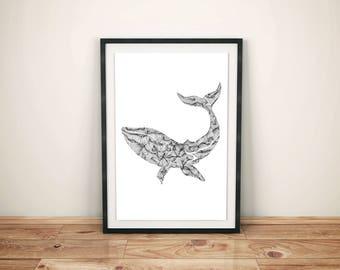 Whale Print - 11x14