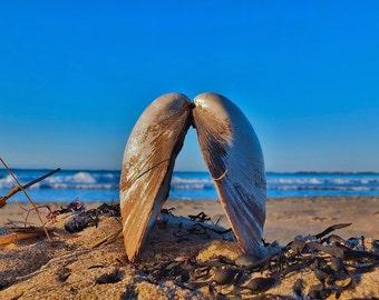 This picture was taken on Popham Beach in Phippsburg, Maine.