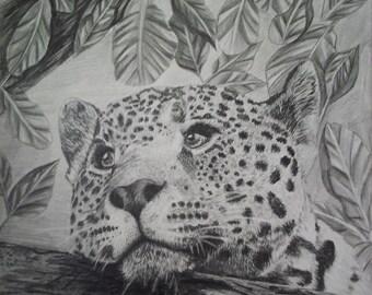 Leopard Portrait Print