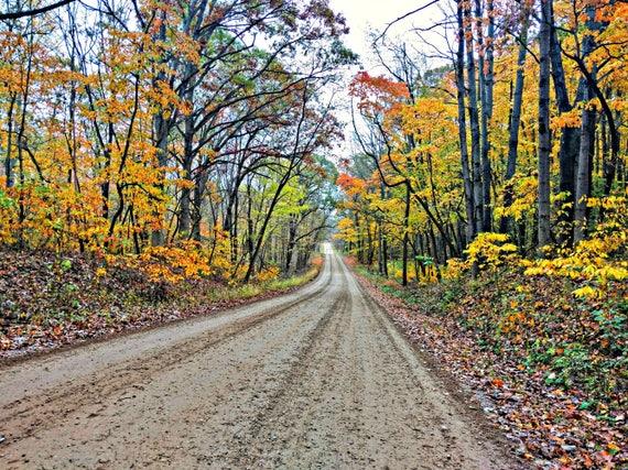 foggy road wall art photography autumn fall road nature print fall photo fall color landscape Crisp Fall Morning fall leaves