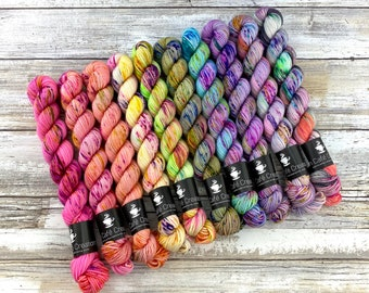 BISCOTTI Sock 4-ply Mini Skein Set | Complete Strawberry Shortcake Summer Collection Set