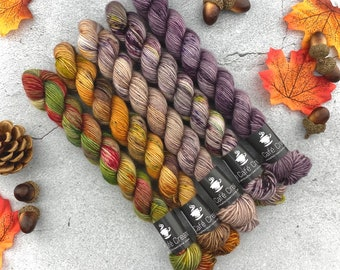 ONE-PLY Mini Skein Set | Strawberry Shortcake Autumn Set