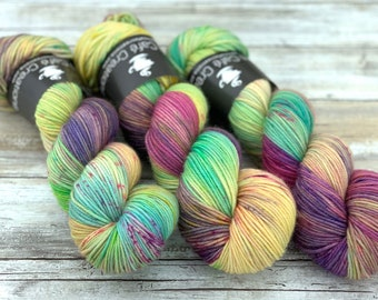 DK Weight | 100% SW Merino Wool | Garden Party | Hand Dyed Yarn | Superwash wool