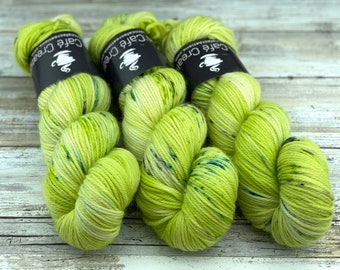 Worsted Weight | Chupacabra | Hand Dyed Yarn | Superwash wool