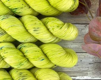 Chupacabra | Hand Dyed Yarn | Superwash Merino Wool