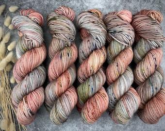 Biscotti Sock | 85/15 SW Merino/Wool Sock Weight| Potted Plant | Hand Dyed Yarn | Superwash wool