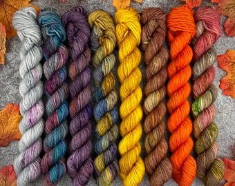 Cozy Autumn Collection   Mini SkeinSet   Hand Dyed Yarn