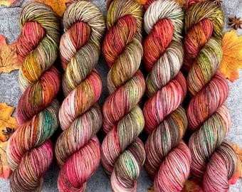 Veranda BFL DK Weight | 100% SW Blue-Faced Leicester Wool | Cinnamon Pumpkin Latte | Hand Dyed Yarn | Superwash wool