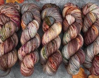 Veranda BFL DK Weight | 100% SW Blue-Faced Leicester Wool | Autumn Leaves | Hand Dyed Yarn | Superwash wool