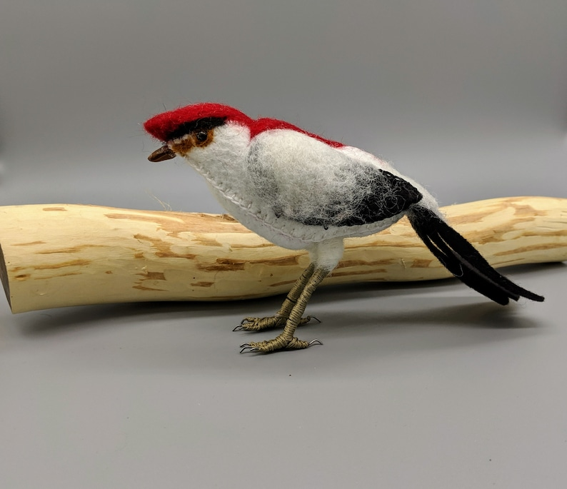 Textile art Araripe Manakin bird sculpture Room decor image 0