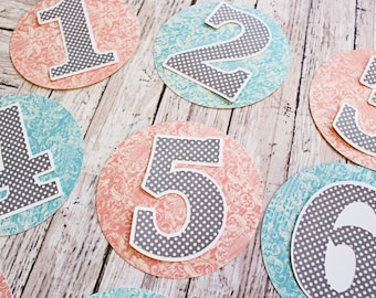 Any Color, Any Pattern, Baby Milestones, Monthly Milestone, Layered Diecut Set, 12 Month, Baby Months, Birthday Number, Numbered Paper Decal