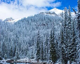 Winter Landscape, Winter Photo, Winter Print, Landscape Photography