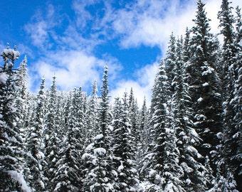 Landscape Photography, Winter Photo, Winter Print, Winter Landscape