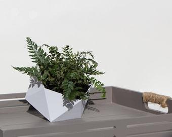 Geometric Planter Icosahedron 3d Printed