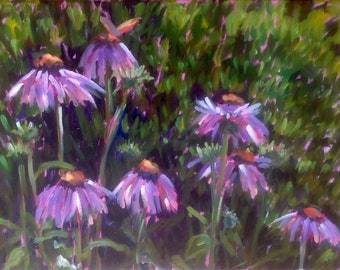 Echinacea and the butterfly