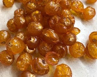 SAMPLE -- Organic Soap Berries