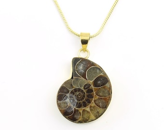Nautilus Shell Necklace, Brass Nautilus Fossil, Spiral, Sacred Geometry, Festival Jewelry, Spiritual, Yoga, Meditation, Boho, Gypsy