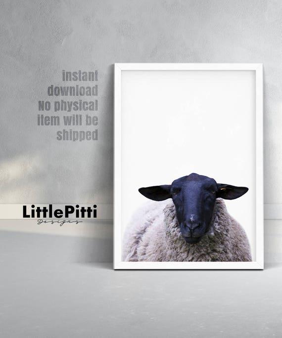 Sheep print nursery farm animal wall art sheep decor sheep   Etsy