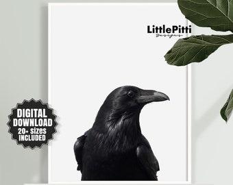 Raven print, raven art, bird print, digital print, raven photo, black raven print, odins raven, modern art print, gothic print, crow photo