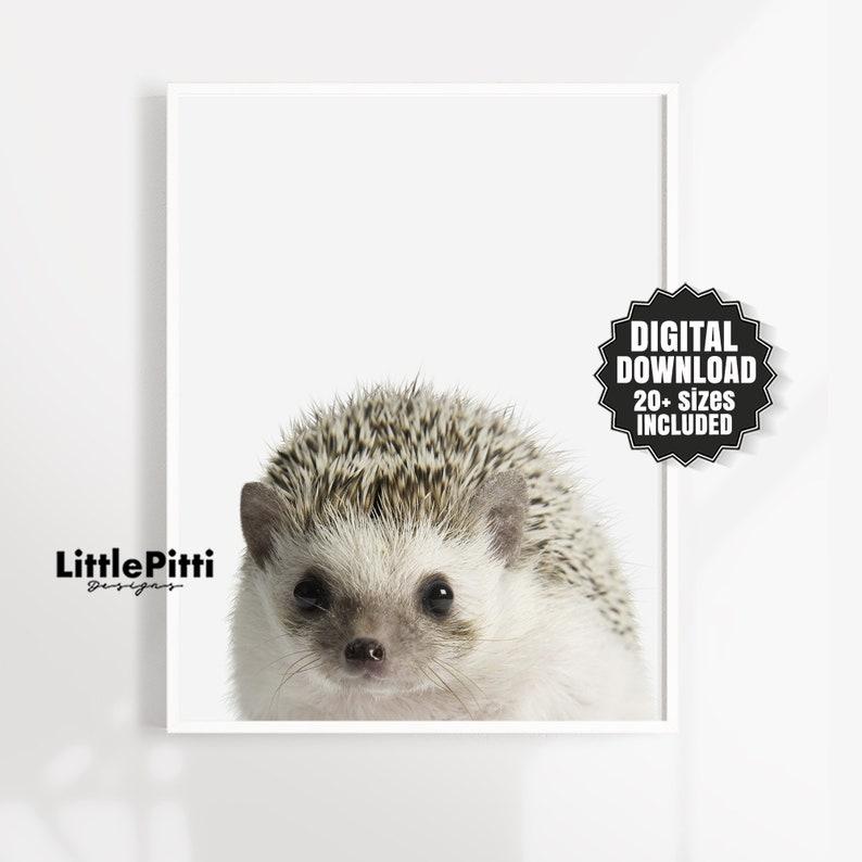 Hedgehog print nursery animal print small animal print image 1