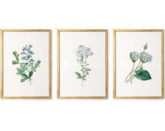 Blue FLOWERS Printable Wall Art, Set of 3 Botanical Prints, Floral Wall Decor, Lotus Flower  Digital Download Art - 2560