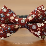 Amelie Cat Bow Tie Collar – Burgundy