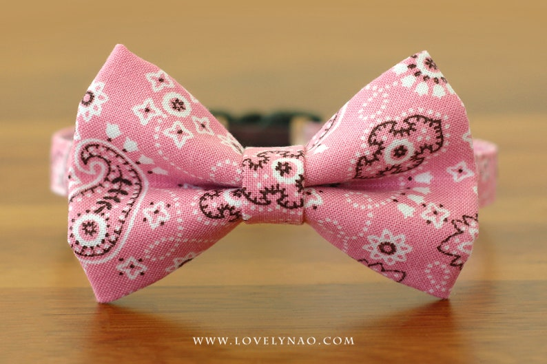 Mini Paisley Cat Bow Tie Collar  Pink image 0