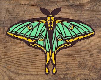 "Vinyl Decal - Spanish Moon Moth - 4.5"" Vinyl Sticker"