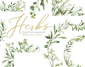 Watercolor Greenery Clipart Green Herbs Leaves Branches Clip Art Foliage Wreath Frames Bright Emerald Fresh Wedding Free Commercial Use PNG
